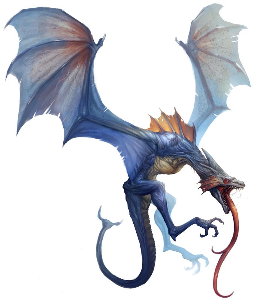 Lesser Dragon Physiology