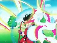 Goku Shield