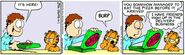 Garfield Paradox
