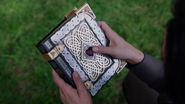 Regina's Book of Spells