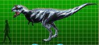 Carnotaurus super