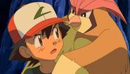 Ash and Pidgeotto