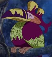 South Bird
