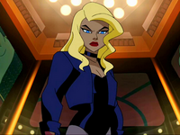 DC Animated Universe Black Canary