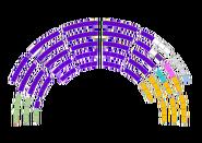 USF Senate (year 11)