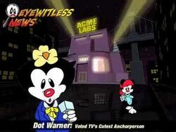 Animaniacs Game Pack Clips