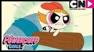 Powerpuff Girls Turn Into Animals! Powerpuff Girls Cartoon Network