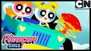 Powerpuff Girls Buttercup Has The Deadliest Lice! Cartoon Network
