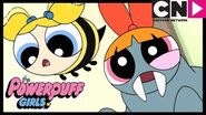 Powerpuff Girls Turn Into Animals! 🐝 Powerpuff Girls Cartoon Network