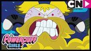 Powerpuff Girls Battle of the Beards Cartoon Network