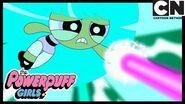Powerpuff Girls Mojo Jojo Was Bliss' Best Friend!? 🙉 Cartoon Network