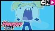 Powerpuff Girls Cat Video Goes VERY Wrong! Cartoon Network