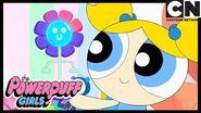 Powerpuff Girls Coding Nightmare Oh, Daisy! Cartoon Network