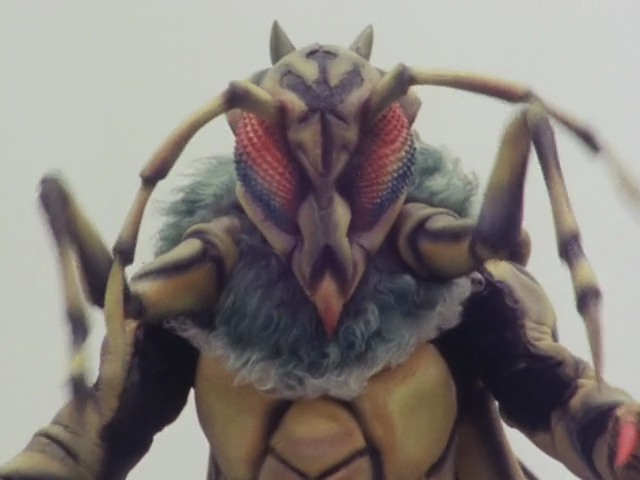 Bee Evo