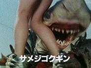 サメジゴクギン