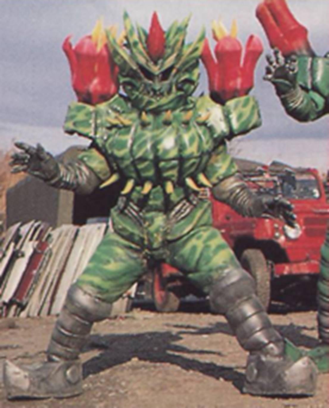 Bara Cactus 2