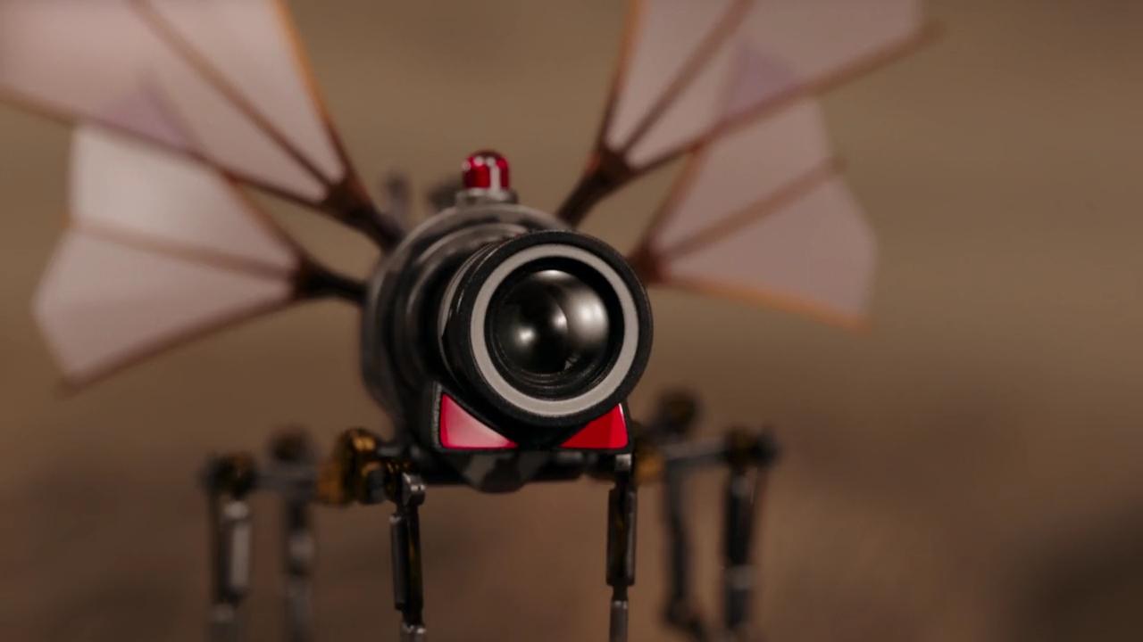 Buzzcams