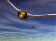 Power Rangers Official Power Rangers Wild Force Final Scene 2-41 screenshot.png