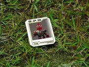 Kraw Card.jpg