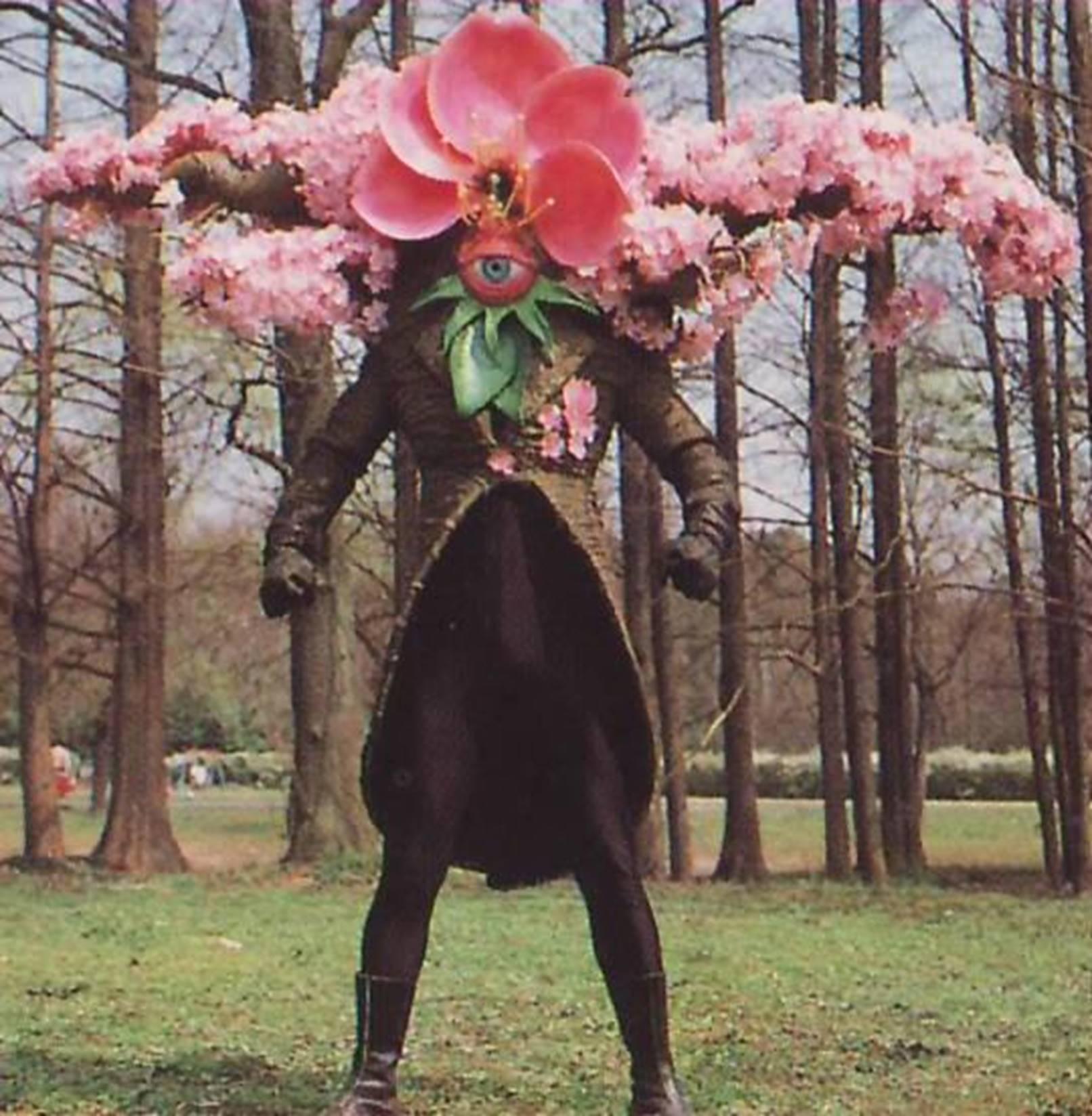 Baron Sakura