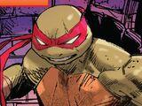 Raphael/IDW