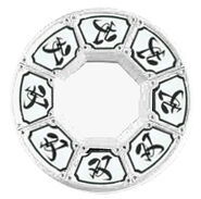 Shinken-disc-double