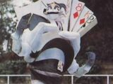 Duke of Cards
