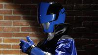 Lupin Blue Profile