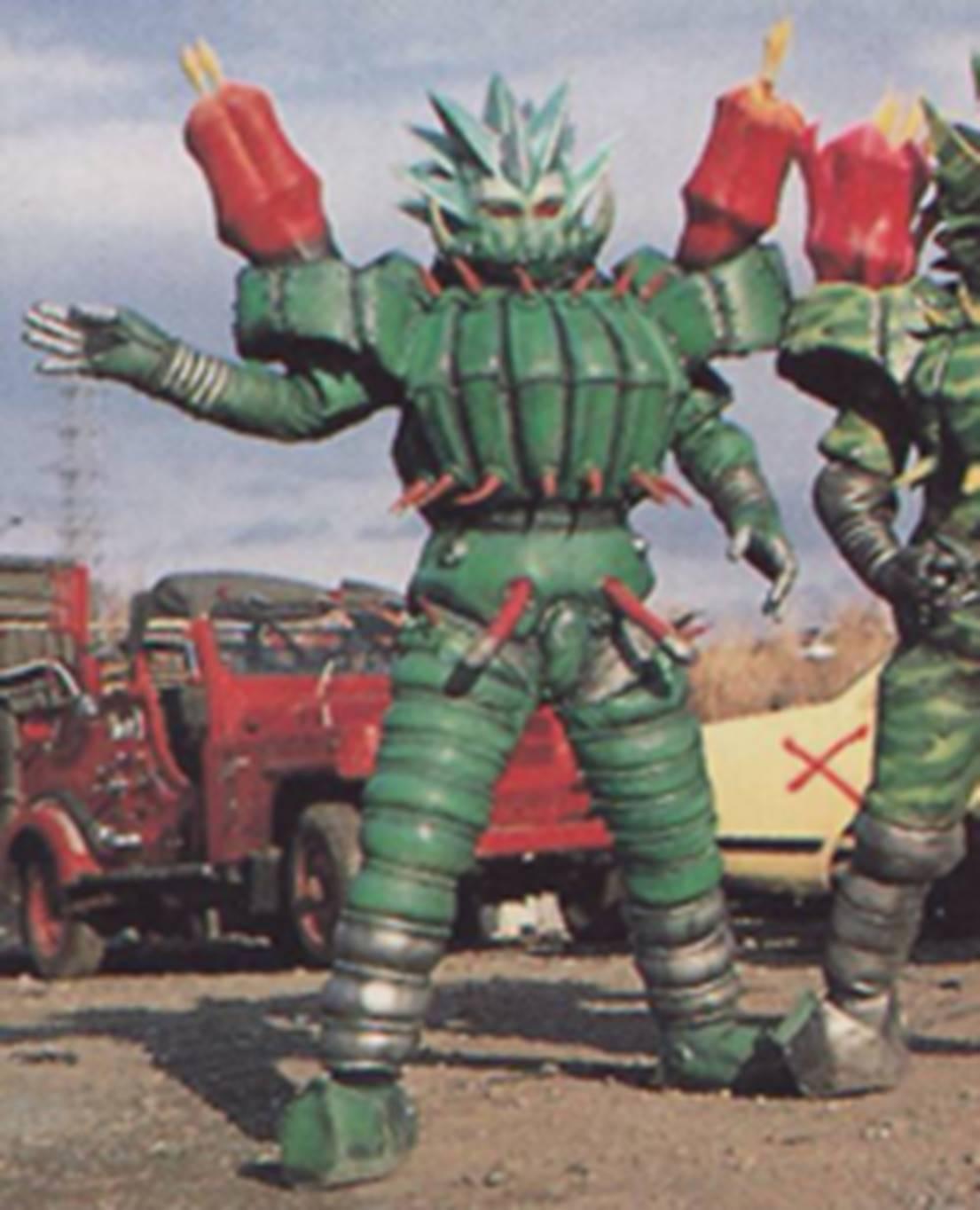 Bara Cactus 1