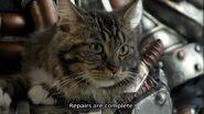 Karizorg's cat