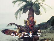 ヤシノミボーマ