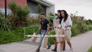 Asuntos de mono