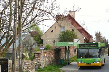 Linia autobusowa nr 167