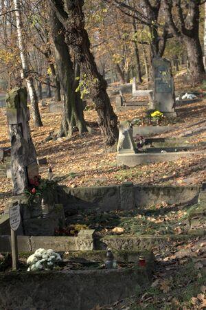 Cmentarz Parafii św. Wojciecha.jpg