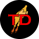TD patch