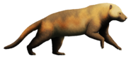 Amphicyon giganteus-reconstruction