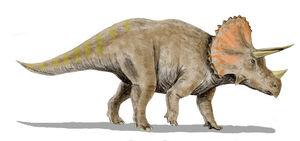 Triceratops BW.jpg