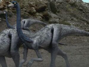 1x1 Ornithomimus.jpg