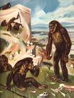 Антропогенный период характеризуется