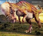 Pachycephalosauruss