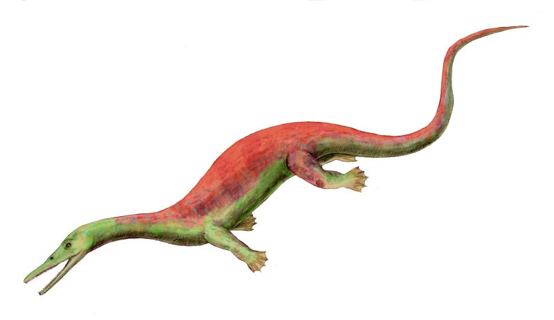 Askeptosaurus