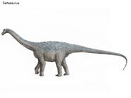 Saltasaurus1