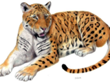 Panthera zdanskyi