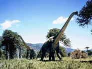 Brachiosaurus comiendo
