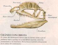 Dilofosaurio