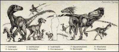 Raptors by antarcticspring-d52hadq.jpg