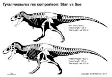 Stan n sue comparison by scotthartman-d5yvql0.jpg