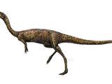 Elaphrosaurus