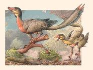 Image 8517 1-Overoraptor-chimentoi