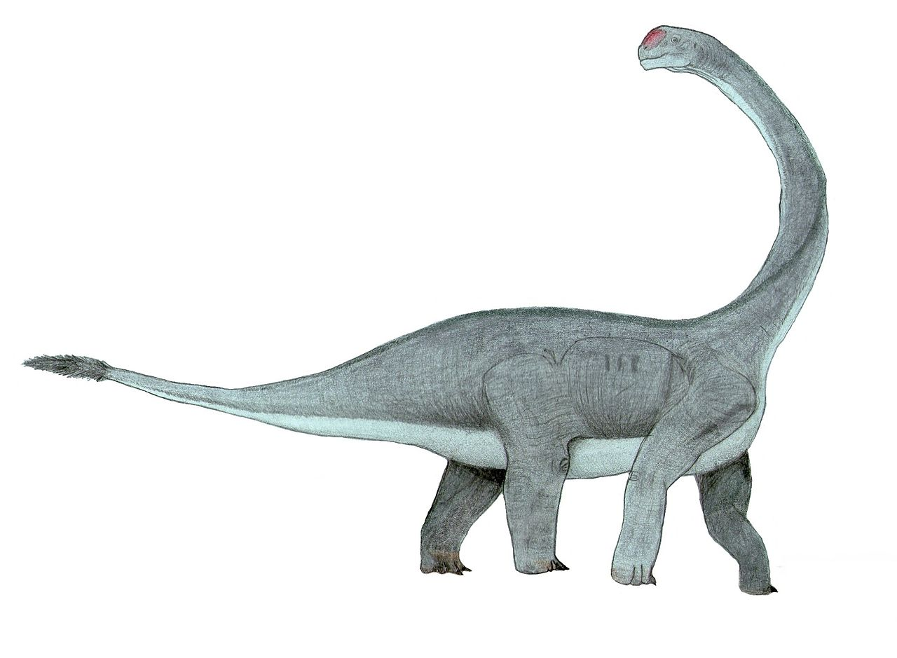 Abrosaurus